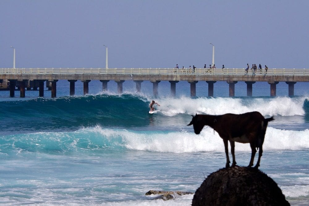 surfing_india_-_india_surf_tours-2-4325236