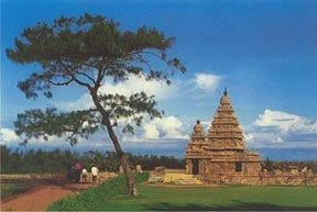 South India Surf Trip: Shore Temple