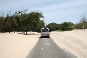 South India Surf Trip: SUV Dunes